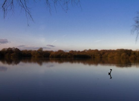 Attenborough Nature Reserve