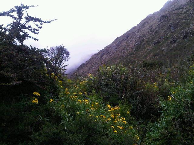 Views from the Inca Trail