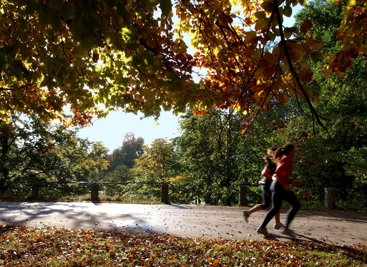 women run in park